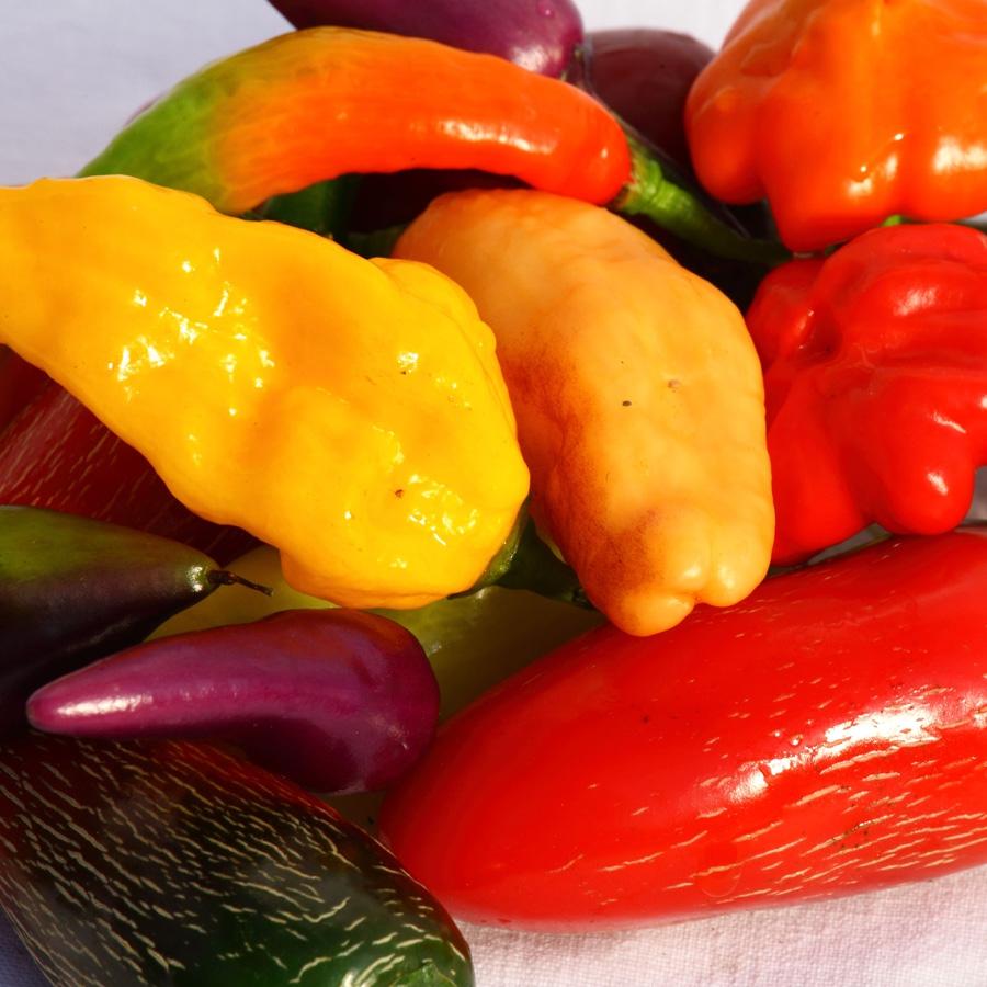 Chiliraritäten<span>Chilis</span>