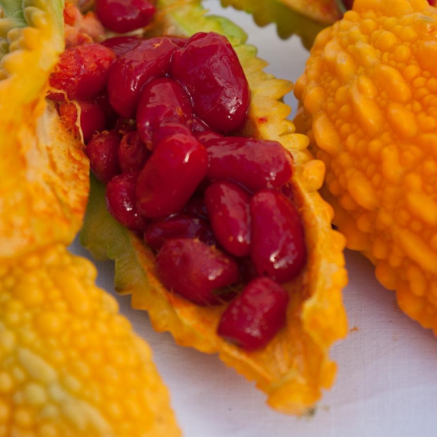 Bittergurke<span>Gemüse & Co</span>